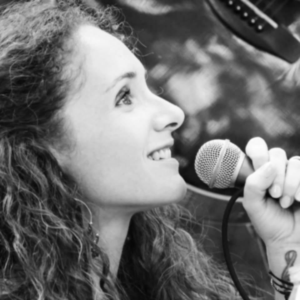 musiciens anniversaire cocktail annecy geneve suisse lyon valence